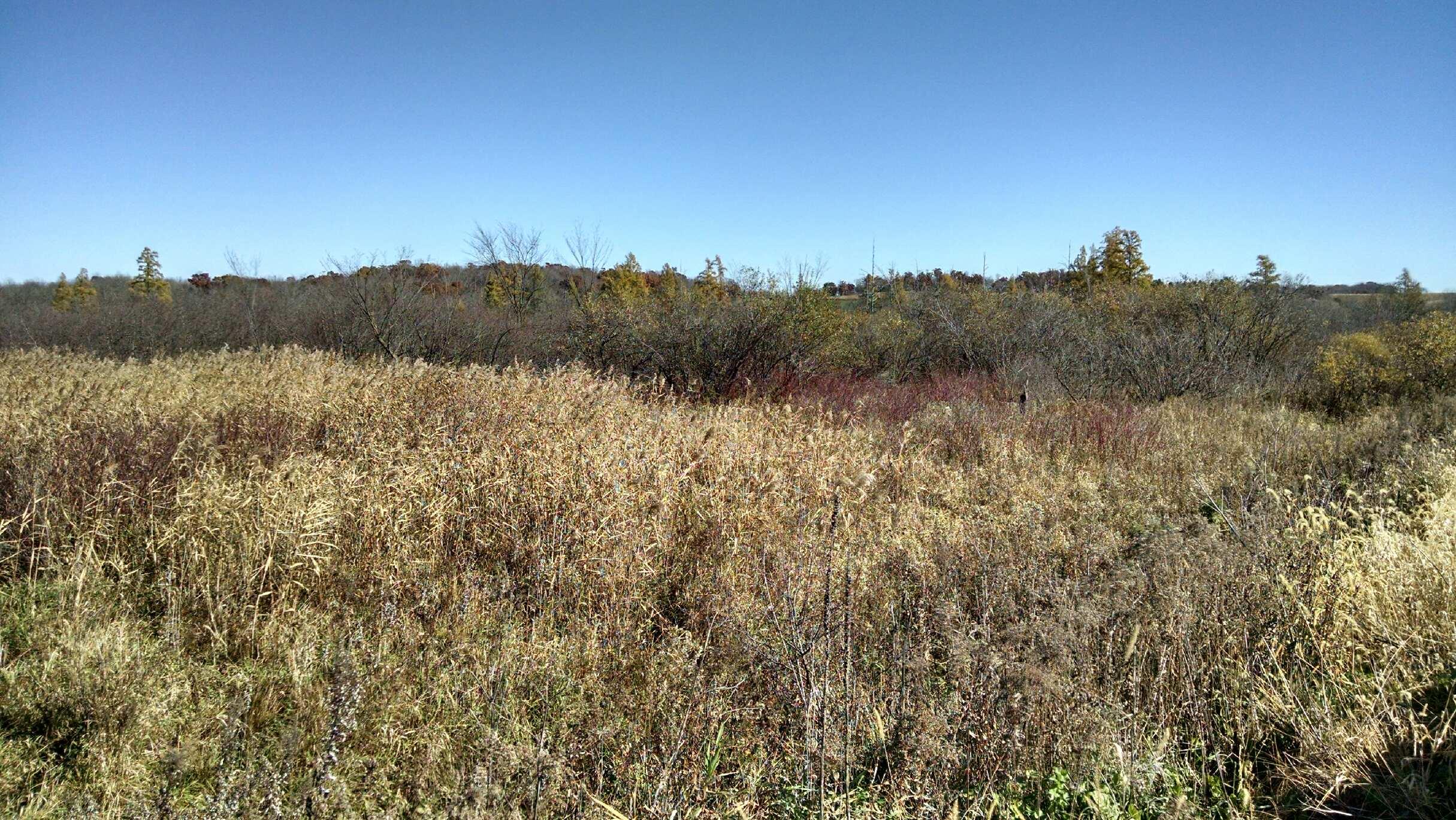 Buffalo County Wisconsin Property Search