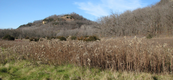 Lake Pepin Wildlife Area