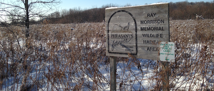Ray Morrison Memorial Wildlife Area
