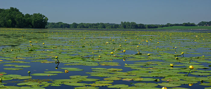 State Natural Areas Program - Wisconsin DNR