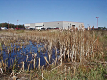 Wetland detention pond near a car dealership