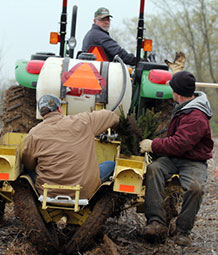 Foresters planting trees with a machine