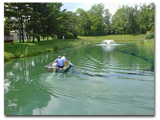 Wisconsin DNR Waterway and wetland permits: aquatic plant