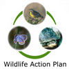 The content for this page came from the Wisconsin Wildlife Action Plan