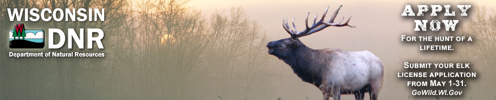 Apply May 1-21 for an elk tag on gowild.wi.gov.