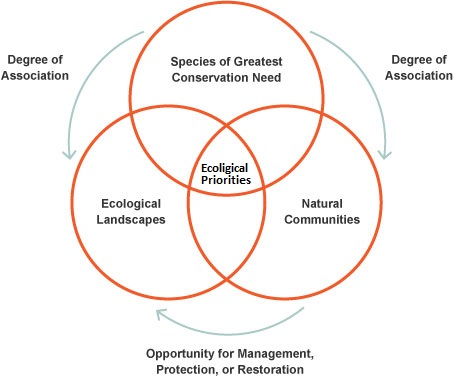 Venn diagram showing the relationship between Species of Greatest Conservation Need, natural communities and ecological landscapes