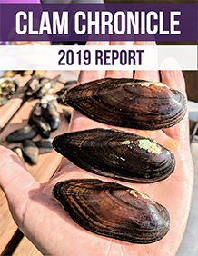 Clam Chronicle newsletter