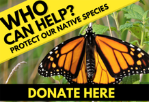 Donate to the Natural Heritage Conservation