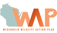 Wisconsin Wildlife Action Plan graphic