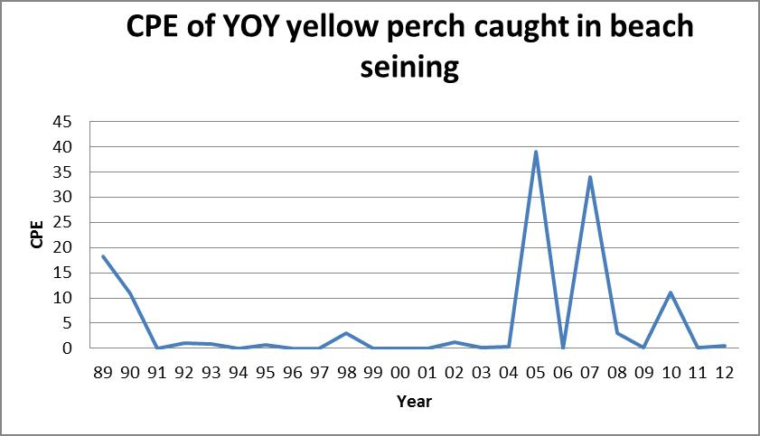 how to catch yellow perch in spring