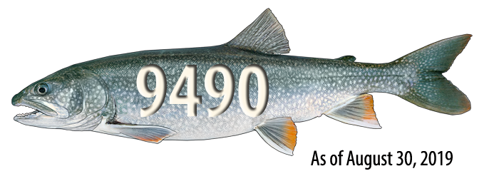 lake trout harvest counter