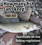 Fishing regulations wisconsin dnr for How much is a wisconsin fishing license