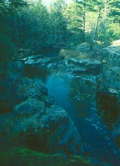 Dells Of The Eau Claire River