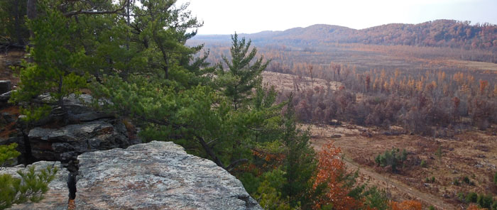 Quincy Bluff in the fall SNA