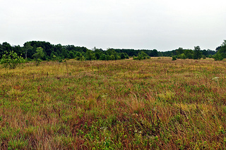 Buffalo River Trail Prairies