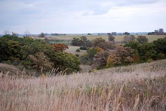 yellowstone savanna state natural area wisconsin dnr