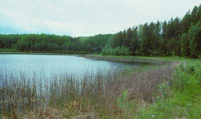 Brule Rush Lake