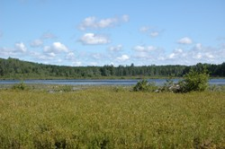 Lily Lake State Natural Area Wisconsin Dnr