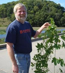 A volunteer finding invasive plants while monitoring a local river.